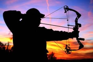 Best Bow Stabilizer For Hunting – Full Buyers Guide